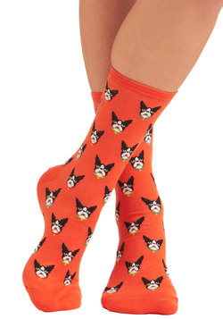 the more the terrier socks, modcloth