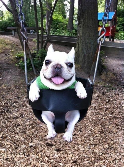 push me higher