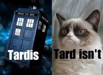 tardis or isnt