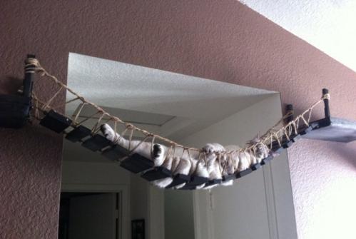 cat bridge, etsy CatastrophiCreations